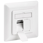CAT 6 wall plate flush